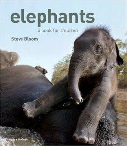 Elephants: A Book for Children - wild elephant video - baby elephant