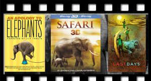 Must watch movies about elephants