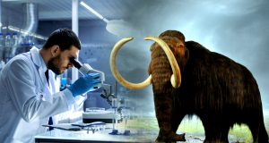 An artificial womb to grow mammoth - elephant hybrid